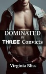Dominated By Three Convicts - Hard MFMM Erotica