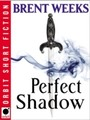 Perfect Shadow - A Night Angel Novella