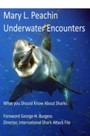 Underwater Encounters