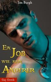 Ein Job wie kein anderer - Gay Erotik