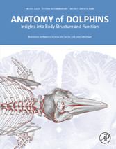 Anatomy of Dolphins - Insights into Body Struct...