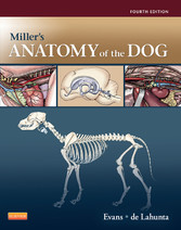 Millers Anatomy of the Dog