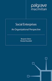 Social Enterprises - An Organizational Perspective