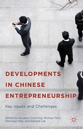 Developments in Chinese Entrepreneurship - Key ...
