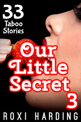 Our Little Secret #3 - 33 Taboo Stories