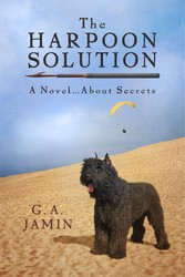 The Harpoon Solution - A Novel....About Secrets