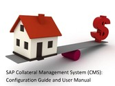 SAP Collateral Management System (CMS): Configu...