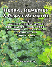 Herbal Remedies & Plant Medicine - Timeless Anc...