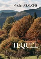 TEQUEL - Mene TEQUEL Parsin