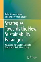 Strategies Towards the New Sustainability Parad...