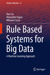 Rule Based Systems for Big Data - A Machine Learning Approach