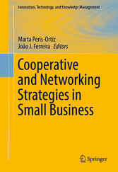 Cooperative and Networking Strategies in Small ...