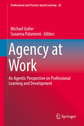 Agency at Work - An Agentic Perspective on Prof...