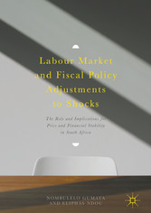 Labour Market and Fiscal Policy Adjustments to ...