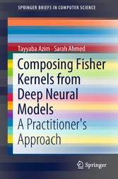 Composing Fisher Kernels from Deep Neural Models - A Practitioner's Approach