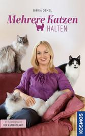 Mehrere Katzen halten - Mein Wissen aus der Kat...