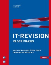 IT-Revision in der Praxis
