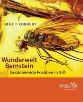 Wunderwelt Bernstein - Faszinierende Fossilien in 3-D