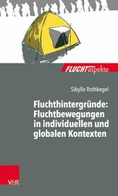 Fluchthintergründe: Fluchtbewegungen in individ...