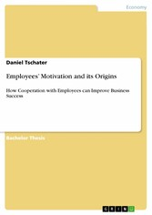 Employees Motivation and its Origins - How Coop...