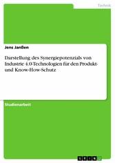 Darstellung des Synergiepotenzials von Industri...