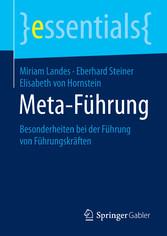 Meta-Führung - Besonderheiten bei der Führung v...