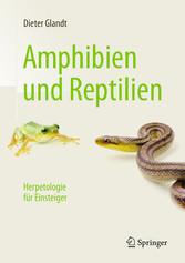 Amphibien und Reptilien - Herpetologie für Eins...