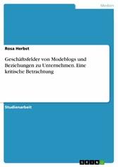 Geschäftsfelder von Modeblogs und Beziehungen z...