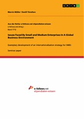 Issues Faced By Small and Medium Enterprises In...