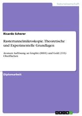 Rastertunnelmikroskopie. Theoretische und Exper...