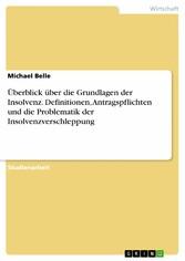 Überblick über die Grundlagen der Insolvenz. De...