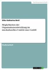 Möglichkeiten der Organisationsentwicklung im i...