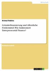 Gründerfinanzierung und öffentliche Fördermitte...