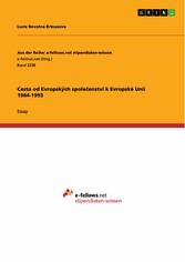 Cesta od Evropských spole?enství k Evropské Unii 1984-1993