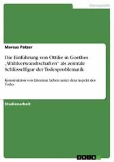Die Einführung von Ottilie in Goethes Wahlverwa...