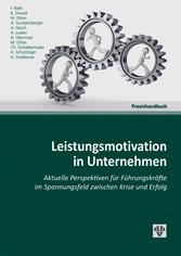 Leistungsmotivation in Unternehmen - Aktuelle P...