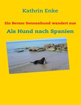 Ein Berner Sennenhund wandert aus - Als Hund nach Spanien