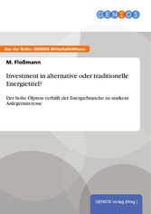Investment in alternative oder traditionelle En...