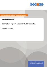 Branchenreport Energie & Rohstoffe - Ausgabe 1/2013