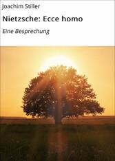 Nietzsche: Ecce homo - Eine Besprechung