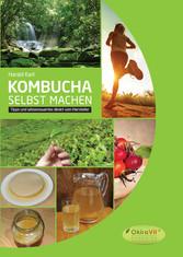 Kombucha selbst machen - Tipps und Wissenswerte...