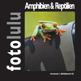 Amphibien & Reptilien - fotolulu's Bildband 3