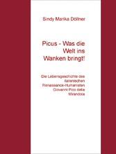 Picus - Was die Welt ins Wanken bringt! - Die L...