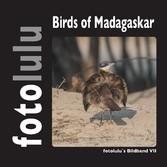 Birds of Madagaskar - fotolulus Bildband VII