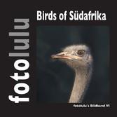 Birds of Südafrika - fotolulus Bildband VI