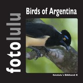 Birds of Argentina - fotolulus Bildband X