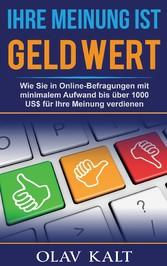 Ihre Meinung ist Geld Wert - Wie Sie in Online-...