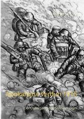 Apokalypse Verdun 1916 - Der Opfergang der Gosl...