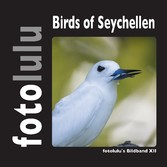 Birds of Seychellen - fotolulus Bildband XII