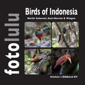 Birds of Indonesien - North-Sulawesi, East-Born...